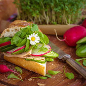 Baguette with green pesto — Stock Photo