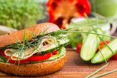 Tasty wholemeal burger — Stock Photo