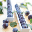 Fresh ripe plums from an organic farm — Stock Photo #26091529