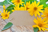 Blank paper tag and yellow coneflowers — Stock Photo
