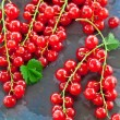 Red currant on stone tray — Stock Photo