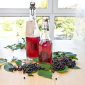 Syrup and elfer berries — Stockfoto
