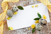 Quail eggs and little flowers — Stock Photo