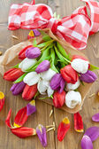 Colorful tulips for easter — Foto de Stock