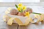 Yellow narcissus in egg shell — Stock Photo