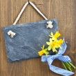 Stock Photo: Little slate board and fresh daffodils