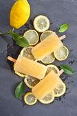 Fresh lemon popsicles — Stock Photo