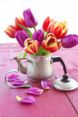 Fresh tulips on red — Stock Photo