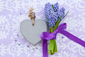Fresh hyacinths and a heart — Stock Photo