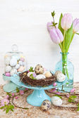 Little easter nest with quail eggs — Photo