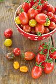 Varietà di pomodori — Foto Stock