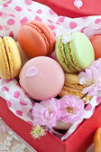 Colorful macaroons in red box — Stock Photo
