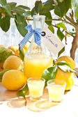 Homemade Limoncello — Stockfoto