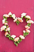 Carnations in heart-shape — Stock Photo