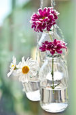 Fresh flowers in little bottles — Stock Photo