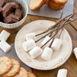 Marshmallows to be toasted — Stock Photo #48714349