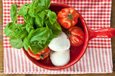 Tomatoes, mozzarella and fresh basil — Stock Photo