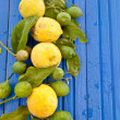 Fresh organic Lemons — Stock Photo #50527895