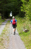 Man in best age does nordic Walking — Stock Photo