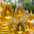 Little Buddhas — Stock Photo