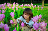 Cute Thai girl hiding among pink Siam Tulip — Stock Photo