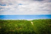 Trawnik plaży — Zdjęcie stockowe