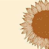 Sfondo floreale vintage con girasole. carta disegnata stile retrò con fiori — Vettoriale Stock