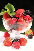 Bowl with berry fruit — Stock Photo