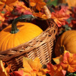 Stock Photo: Pumpkins in basket