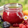 Jar with fresh jam and fruits in the garden — Stock Photo