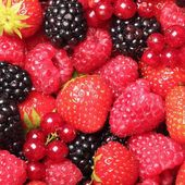 Close-up of berry fruit — Stock Photo