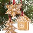 Christmas gingerbread cookies hanging on branch — Stock Photo #26657531