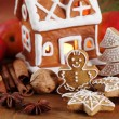 Gingerbread cookies and decorations. — Stock Photo
