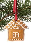 Christmas gingerbread cookie hanging on branch. — Foto de Stock
