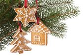 Christmas gingerbread cookies hanging on branch — Stock Photo