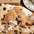 Close-up of plate with gingerbread cookies — Stock Photo #26712017