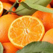 Cross section of tangerine. — Stock Photo