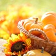 Pumpkins in basket and decorative corns. — Stock Photo