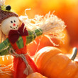 Scarecrow and pumpkins — Stock Photo