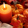 Open Bible, candle, and autumn decorations. — Stock Photo #26876261