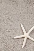 Starfish on sand. — Stock Photo
