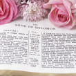 Holy Bible opened on Song of Solomon and flowers. — Stock Photo #27200971