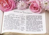 Holy Bible opened on Song of Solomon and flowers. — Stock Photo