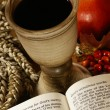 Stock Photo: Open Bible and chalice with wine,