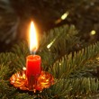 Burning candle on Christmas tree. — Stock Photo