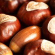Close-up of chestnuts and acorns. — Stock Photo #27418599