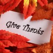 Card with Give Thanks on autumn colorful leaves. — Stock Photo