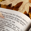 Open Bible and autumn leaves. — Stock Photo #27498519