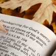 Stock Photo: Open Bible and autumn leaves.