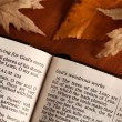 Open Bible and autumn leaves. — Stock Photo #27499547